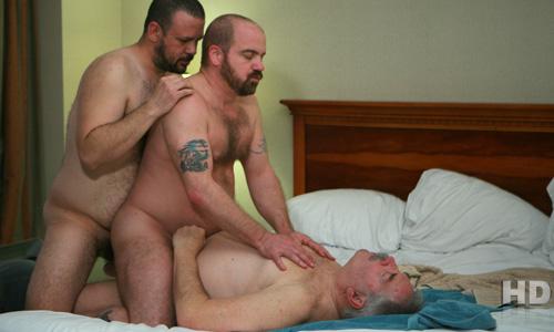 trio-bears