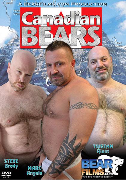 bear-dvd