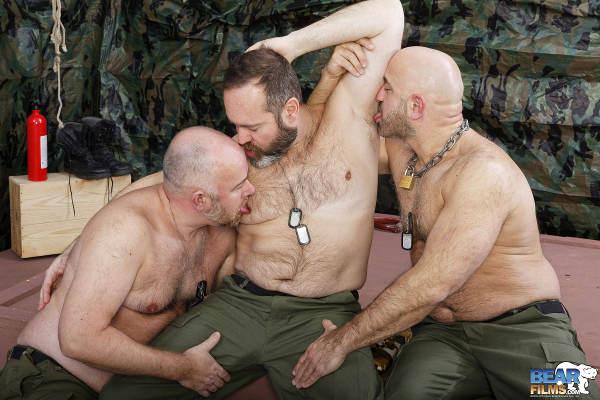 trio-bear