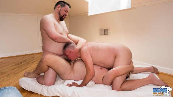 trio-gay-bears