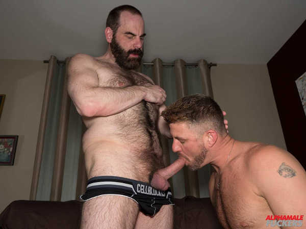 sexe ttbm french bear gay